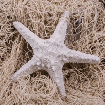 подвесная морская звезда 15см белая