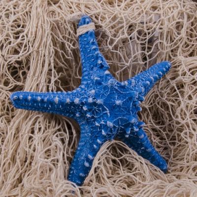 подвесная морская звезда 15см голубая