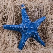 Морская звезда декоративная голубая 15см
