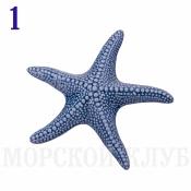 звезда морская 14см